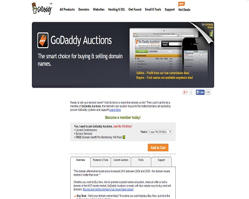 Godaddy Auctions