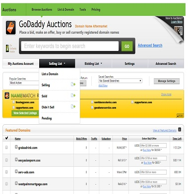 Godaddy Auction